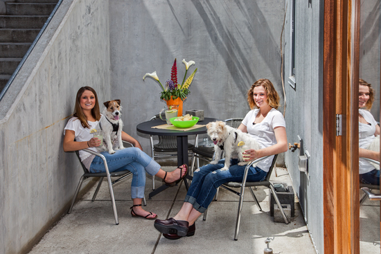 Puppy friendly penthouse patio!